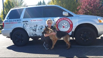 Washington pet detective helps families track down lost pets as a community service