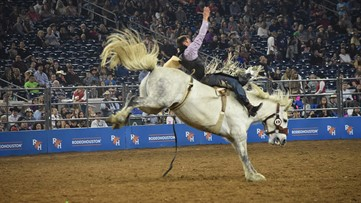 From scholarships to exhibitors, here's how the Houston Livestock Show and Rodeo is handling cancellation