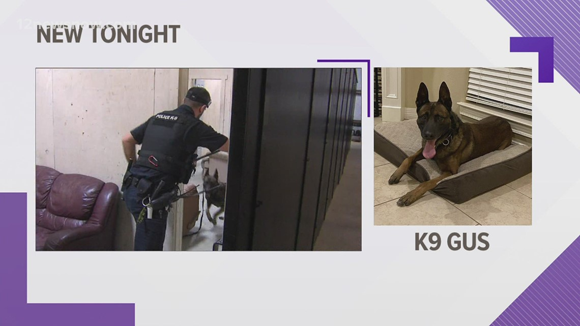 Beaumont Police K-9 Gus retires after more than four years of service
