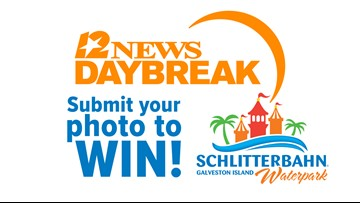 Win one of five family 4-packs of Schlitterbahn tickets