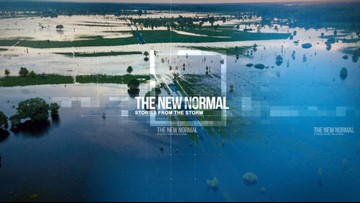 The New Normal: Stories from the Storm