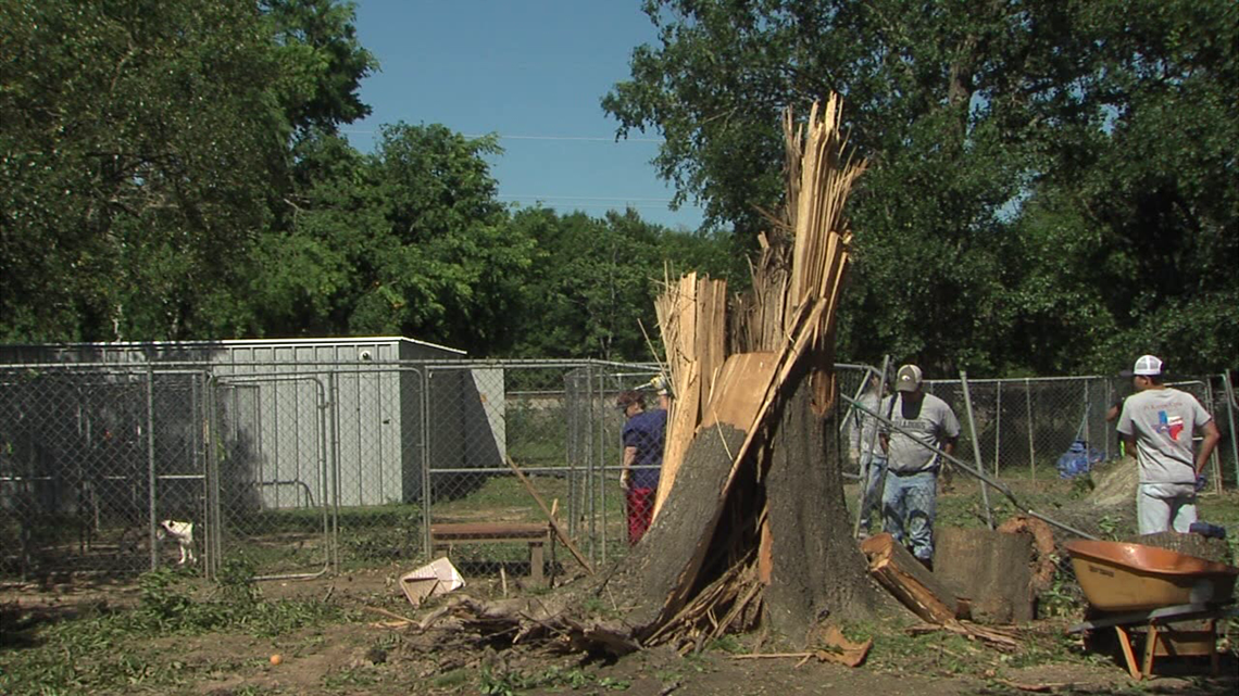 Strong winds knock down trees, fences at Humane Society ...