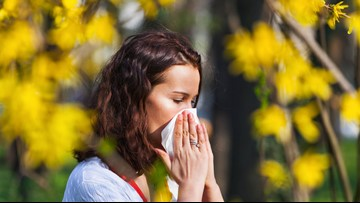 Already feeling allergy season in Southeast Texas? Here's what you need to know