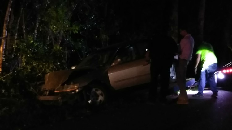 The driver then jumped back into their car and reversed quickly, causing the car to exit the driveway and crash into the trees on the other side of the road.