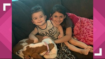Nederland family relieved after return of service dog