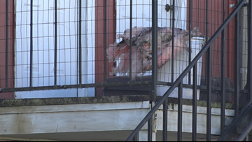 Investigators say heater is to blame in Vidor apartment fire