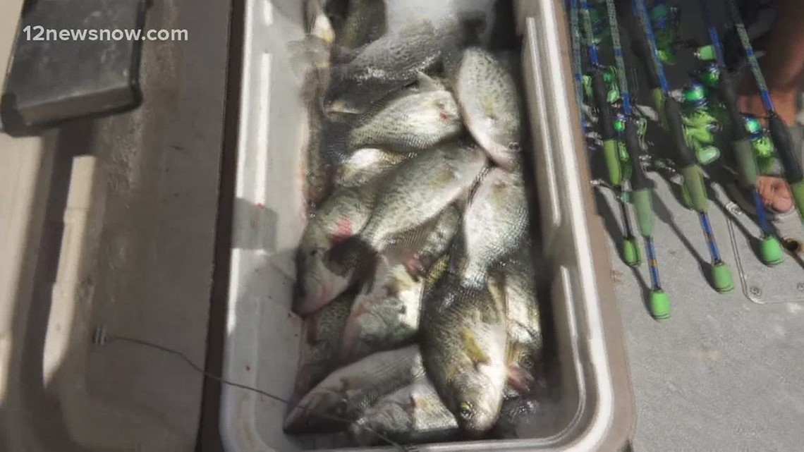 JD Batten and friends pile up the crappie at Rayburn