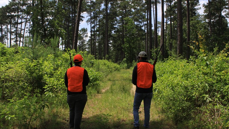 Big Thicket Preserve closes off about 600 acres of hunting ground next month to study wildlife