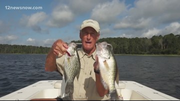9/6 Outdoors Report: Keep your minnow receipts when crappie fishing