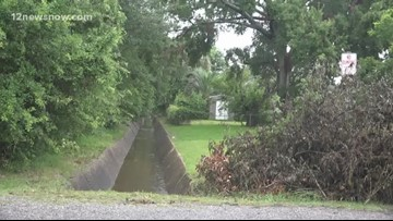 Drainage workers remover 'dumped' tree from ditch in Nederland