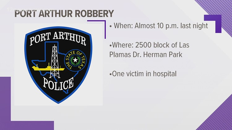 Person attacked, robbed of cell phone by group at Port Arthur park Park