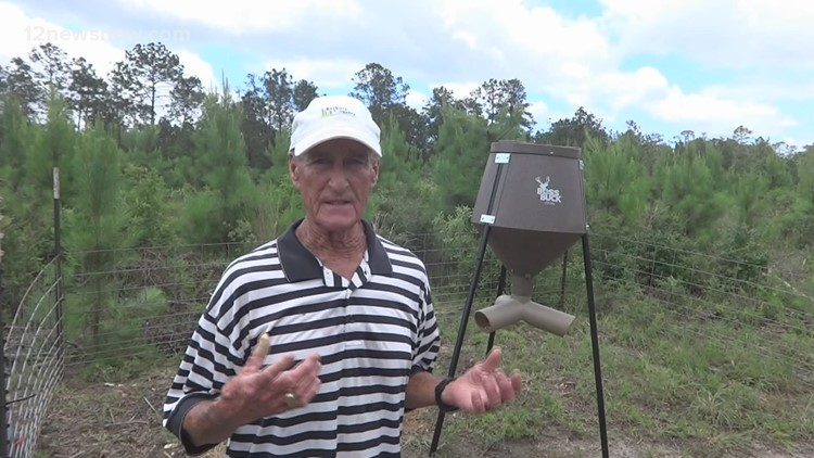 JD Batten gets ahead of hog problem at deer lease
