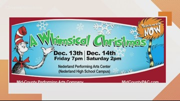 A Whimsical Christmas with Mid-County Performing Arts Company