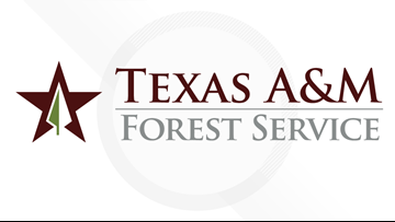 Prescribed burn grants available for some Texas landowners