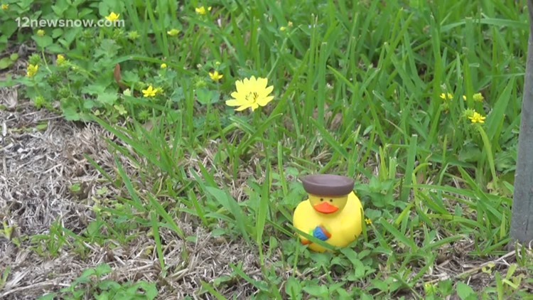 Rubber duckies on the loose in Nederland