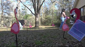 Buna students 'flock' yards to raise money for Alzheimer's research