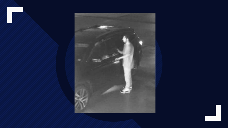 Nederland auto burglary 2