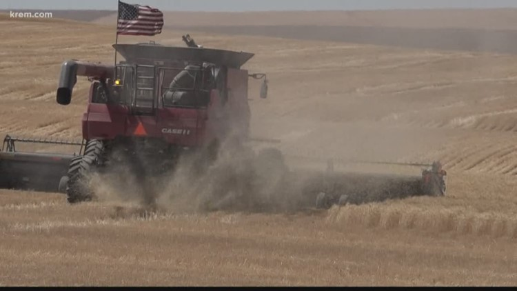 Washington farmers harvest crops for neighbor with Stage 4 cancer