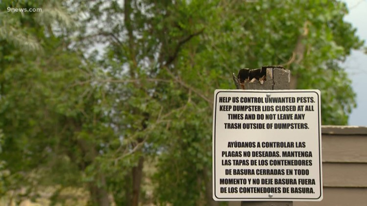 Management company at Denver apartment complex admits to rodent problem