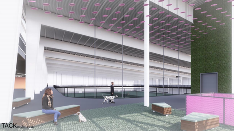 Austin's largest indoor dog park to open late spring 2020 at The Domain