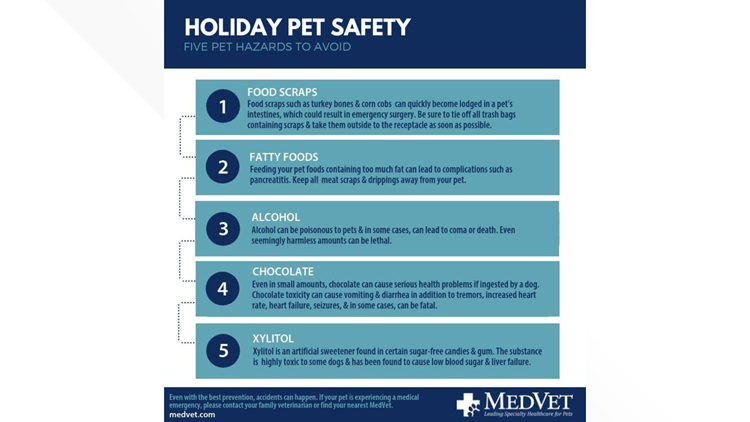 MedVet Holiday Pet Safety graphic
