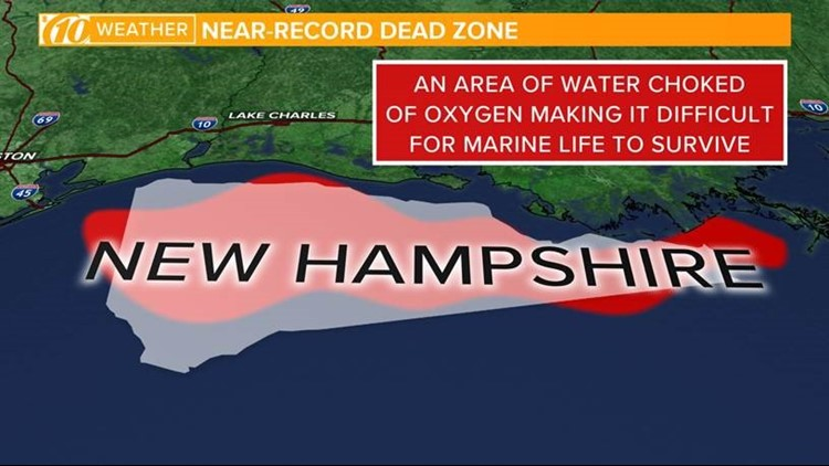 Gulf of Mexico dead zone example