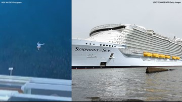 VIDEO: Man leaps off 11th deck of cruise ship, instantly regrets it