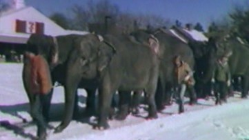 This Week in Weather History: Circus Blizzard of 1980 in Virginia