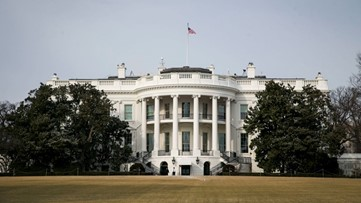 Georgia man had hand-drawn diagrams of White House, planned to become martyr in attack: Affidavit